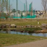大桑ぐるぐる公園2013春_その18♪